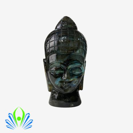 Buddha Lab 1