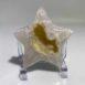 Agate Natural Druzy Star